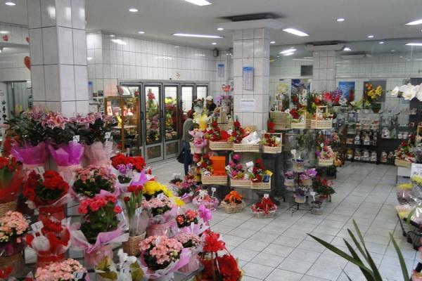 loja-flores-martinho-39369D185-C1C7-85EA-7956-7DC6D6B36E0D.jpg