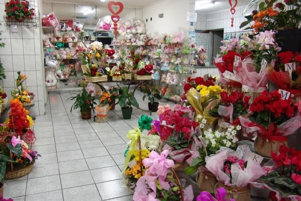 loja-flores-martinho-7A5FAA3CD-D9D2-975D-C379-420B51348BEF.jpg