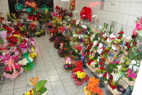 loja-flores-martinho-8303587AD-62D3-B452-8034-007433EA22B2.jpg